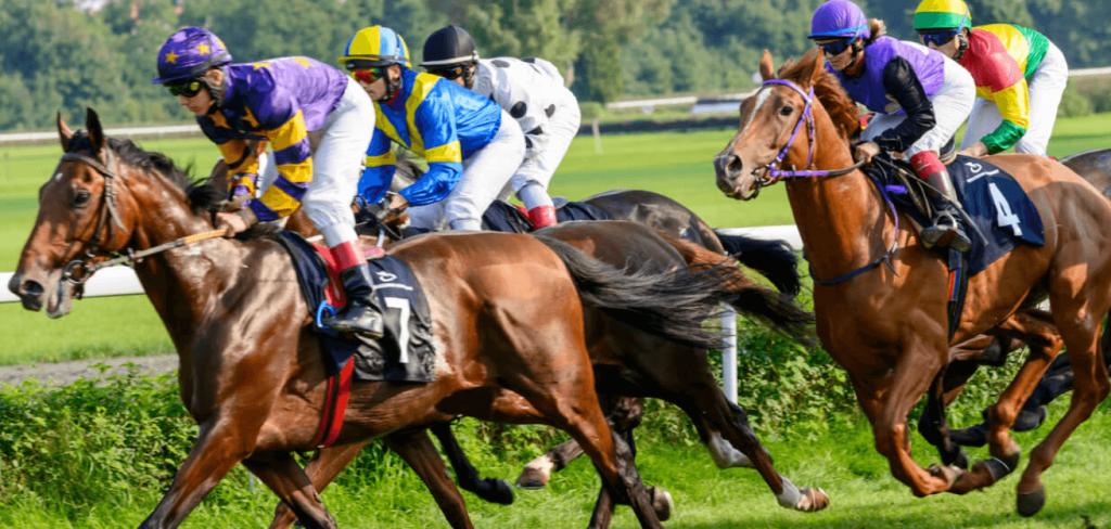 Spille på hest - Odds på hesteløp på nett